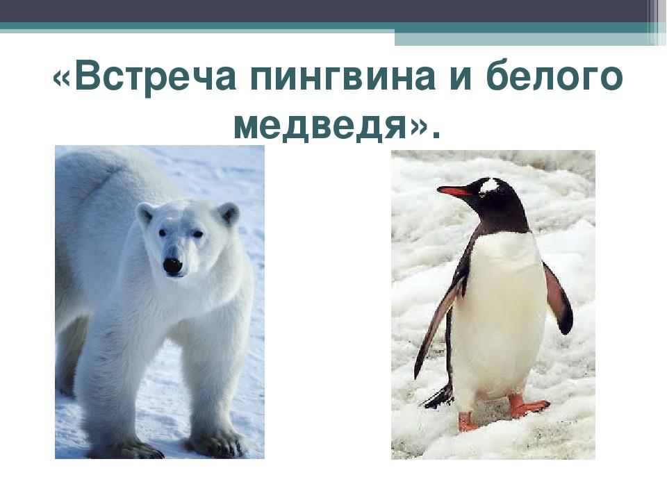 «Встреча пингвина и белого медведя».