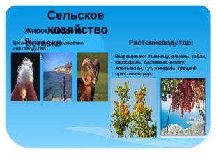 Сельское хозяйство Животноводство: Растениеводство: Шелководство, рыболовство