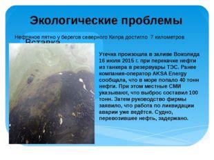 Экологические проблемы Нефтяное пятно у берегов северного Кипра достигло 7 ки