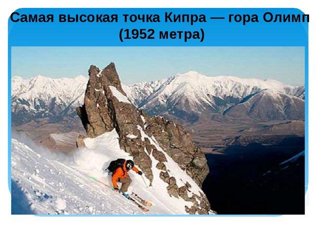 Самая высокая точка Кипра — гора Олимп (1952 метра)
