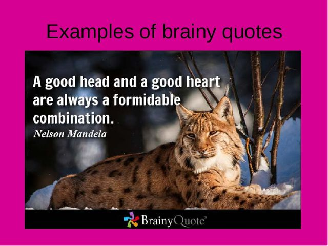 Examples of brainy quotes