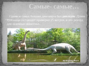 Одним из самых больших динозавров был диплодок. Длина туловища составляет пр