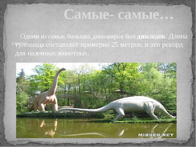 Одним из самых больших динозавров был диплодок. Длина туловища составляет пр...