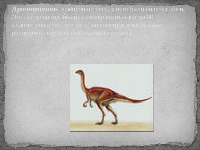 Дромициомим- чемпион по бегу, у него были сильные ноги. Этот страусоподобный...