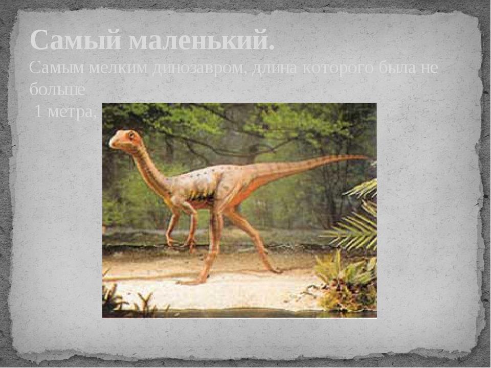 Самый маленький. Самым мелким динозавром, длина которого была не больше 1 мет...