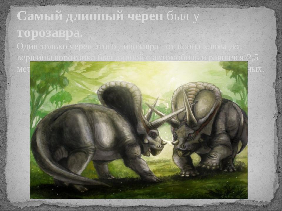 Самый длинный череп был у торозавра. Один только череп этого динозавра - от к...