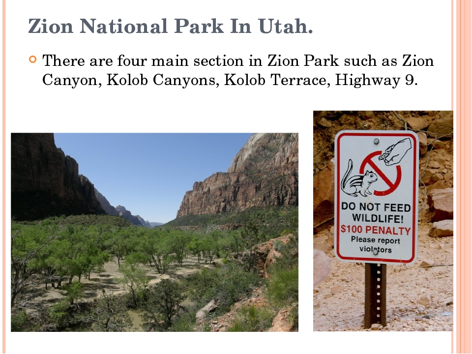 Zion National Park In Utah. There are four main section in Zion Park such as...