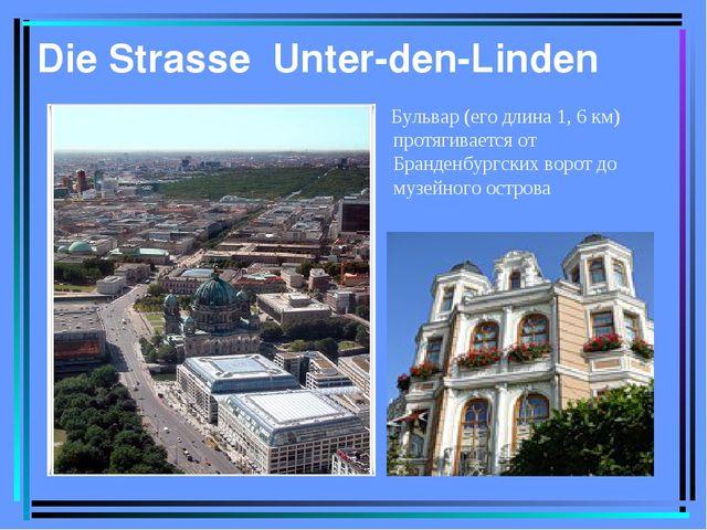 Die Strasse Unter-den-Linden Бульвар (его длина 1, 6 км) протягивается от Бра...