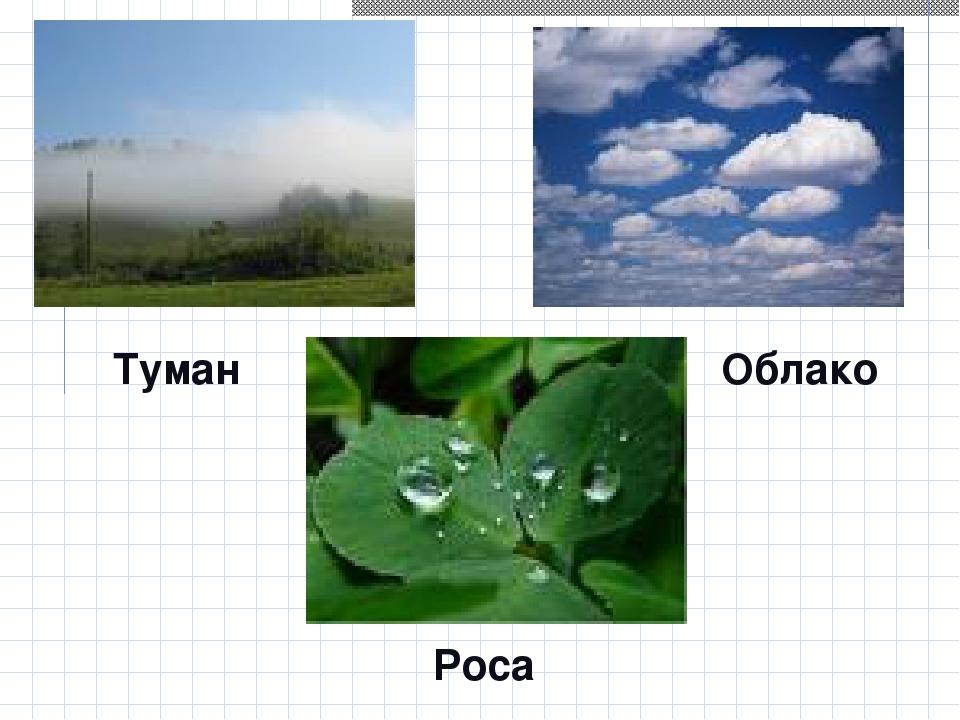 Туман Облако Роса