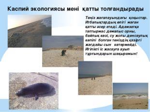 Каспий экологиясы мені қатты толғандырады Теңіз жағалауындағы қоқыстар. Итбал