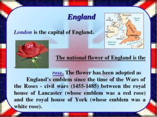 England London is the capital of England. The national flower of England is