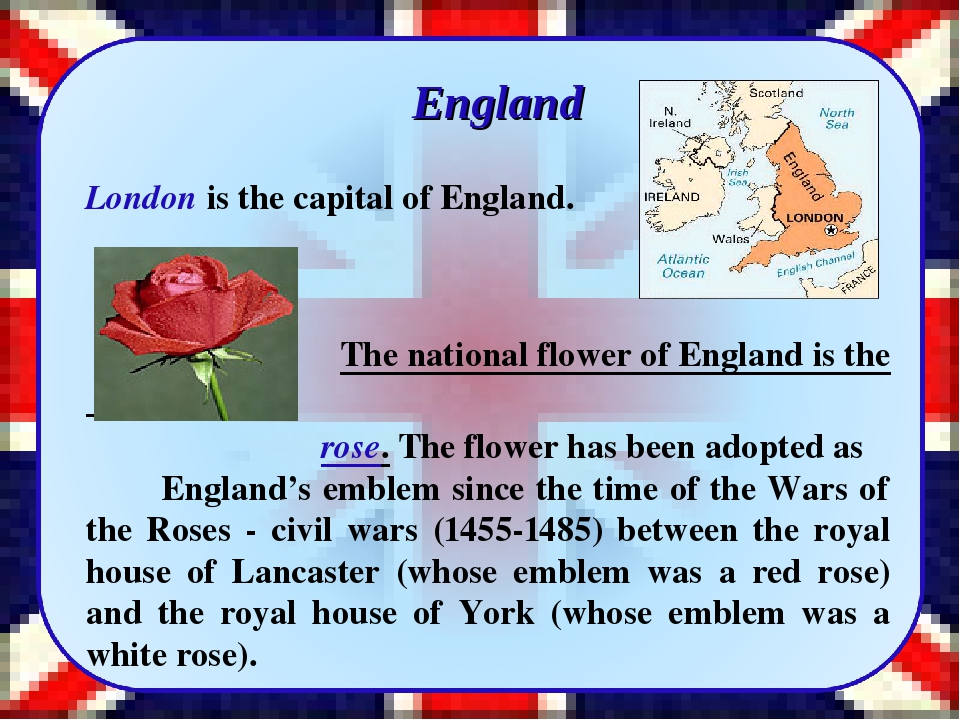 England London is the capital of England. The national flower of England is...