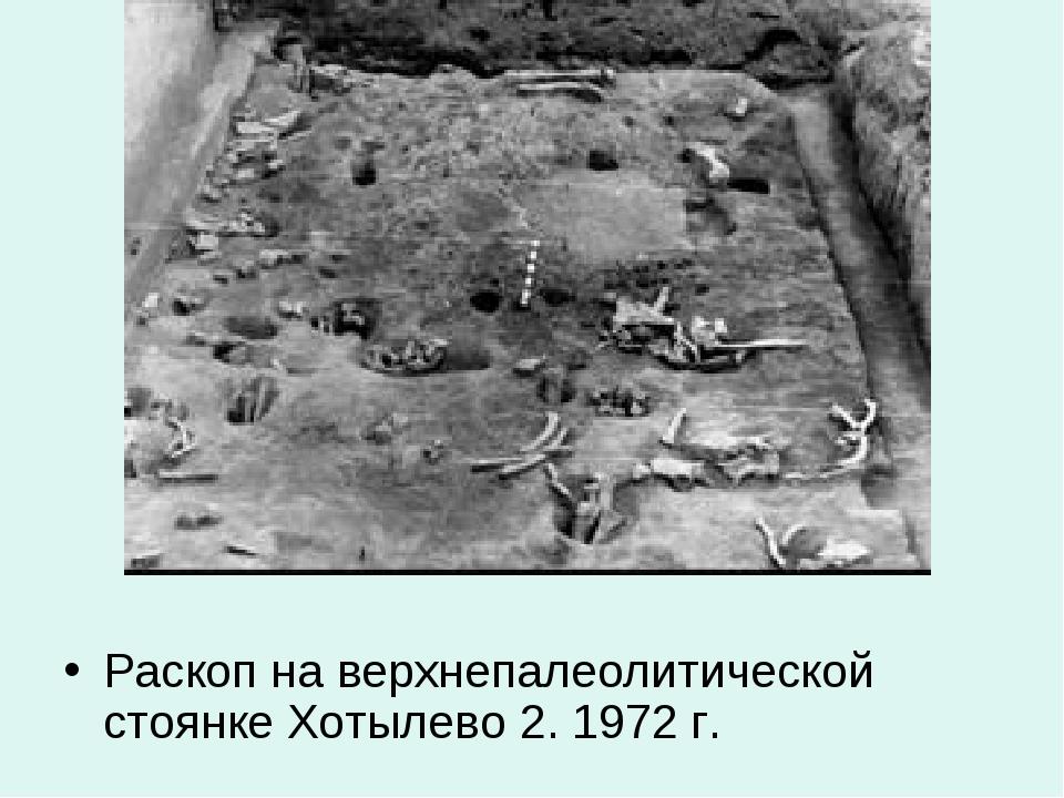 Раскоп на верхнепалеолитической стоянке Хотылево 2. 1972 г.