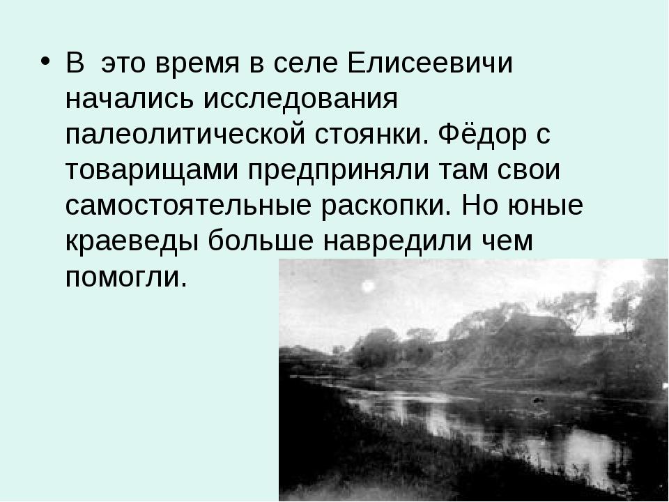 В это время в селе Елисеевичи начались исследования палеолитической стоянки....