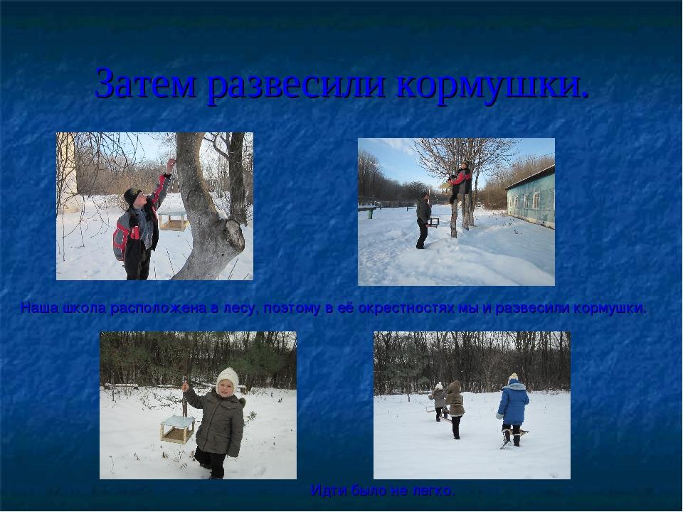 Затем развесили кормушки. Наша школа расположена в лесу, поэтому в её окрестн...