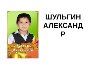 ШУЛЬГИН АЛЕКСАНДР