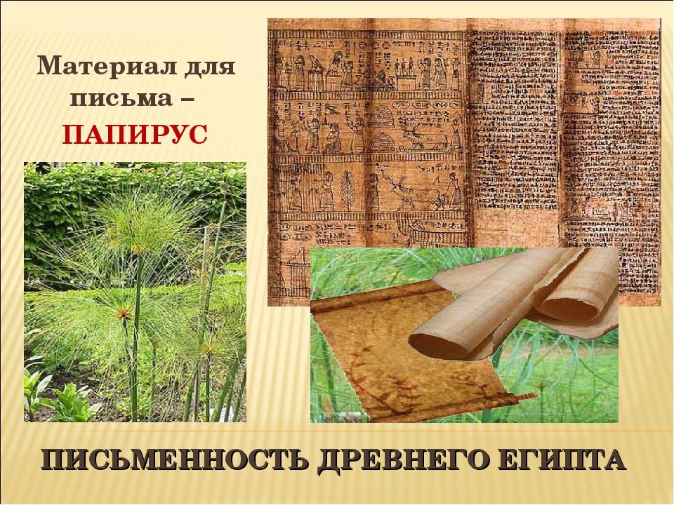 ПИСЬМЕННОСТЬ ДРЕВНЕГО ЕГИПТА Материал для письма – ПАПИРУС