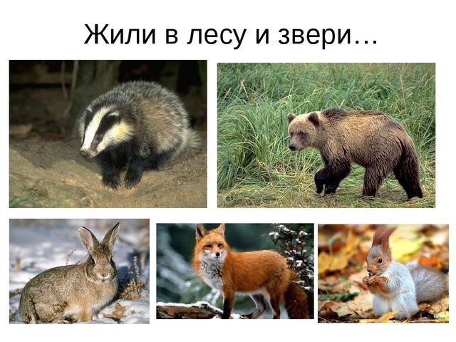 Жили в лесу и звери…