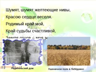 Шумят, шумят желтеющие нивы, Красою сердце веселя. Родимый край мой, Край суд