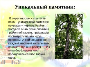 Уникальный памятник: В окрестностях села есть пока уникальный памятник природ