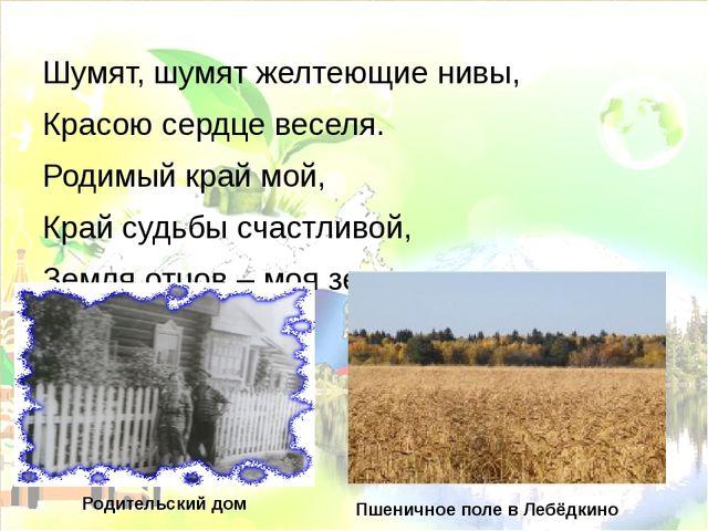 Шумят, шумят желтеющие нивы, Красою сердце веселя. Родимый край мой, Край суд...