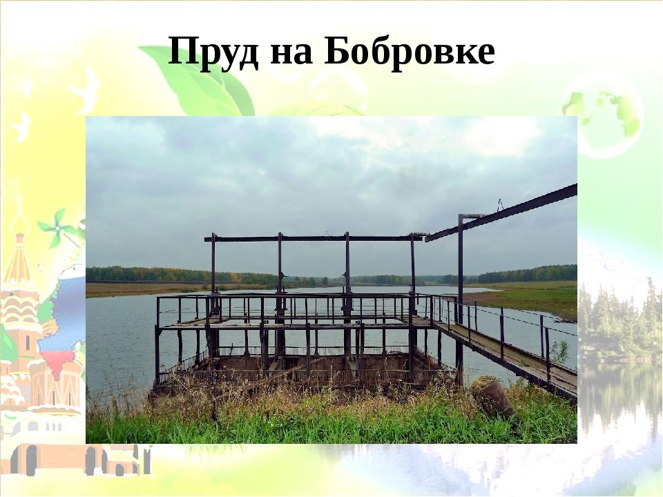Пруд на Бобровке