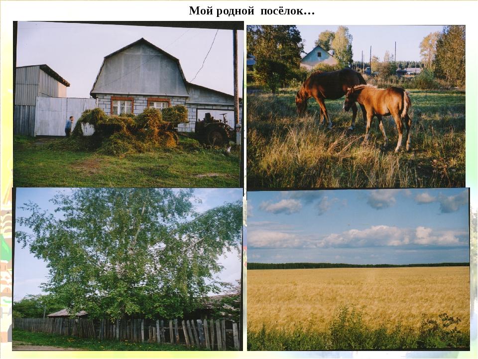 Мой родной посёлок…