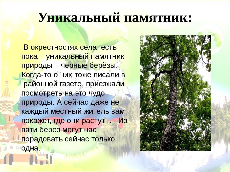 Уникальный памятник: В окрестностях села есть пока уникальный памятник природ...