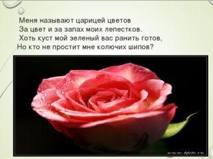 Меня называют царицей цветов За цвет и за запах моих лепестков. Хоть куст мо