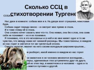 Сколько ССЦ в стихотворении Тургенева СОБАКА Нас двое в комнате: собака
