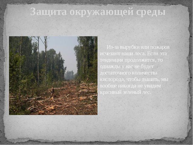 Защита окружающей среды Из-за вырубки или пожаров исчезают наши леса. Если э...