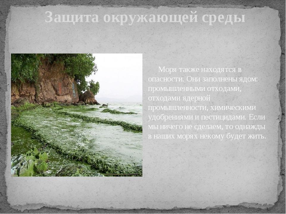 Защита окружающей среды Моря также находятся в опасности. Они заполнены ядом...