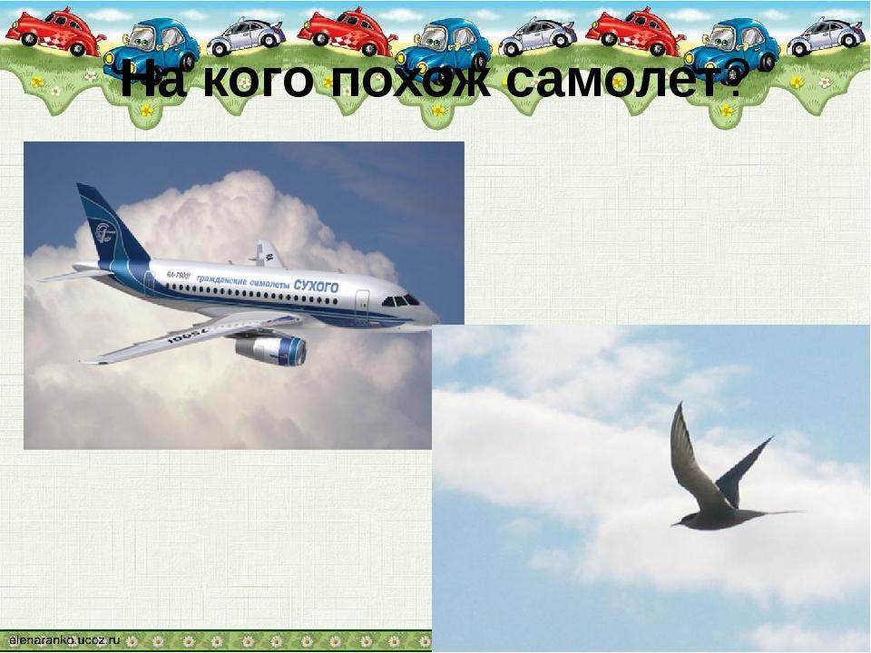На кого похож самолет?