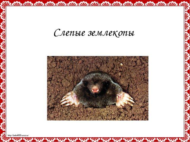 Слепые землекопы http://linda6035.ucoz.ru/