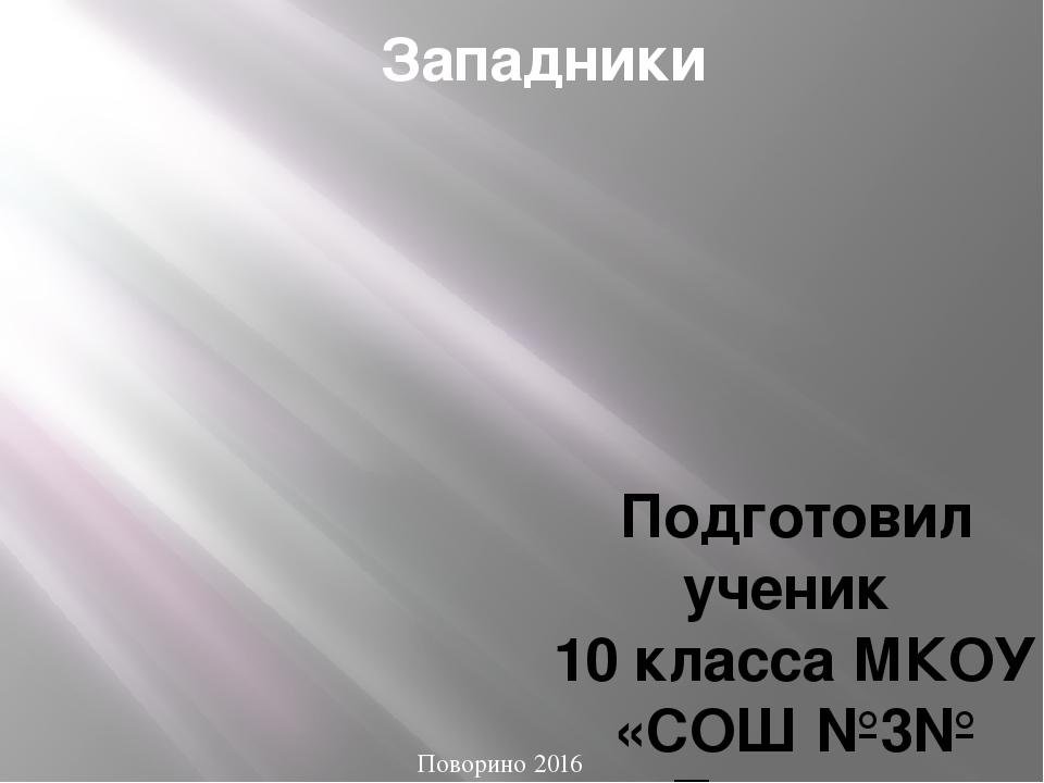 Западники Подготовил ученик 10 класса МКОУ «СОШ №3№ г.Поворино Назаров Никита...