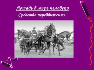 Лошадь в мире человека Средство передвижения