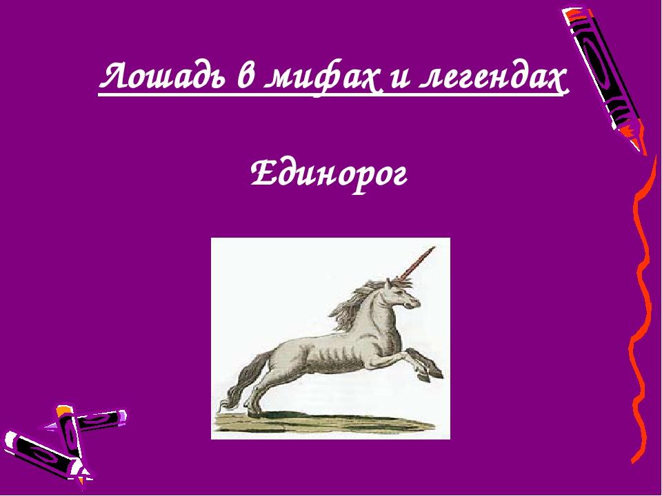 Лошадь в мифах и легендах Единорог
