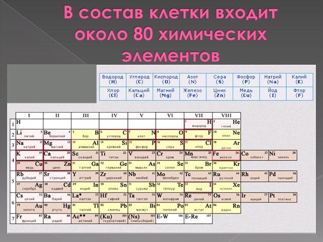 hello_html_m608fb35d.jpg