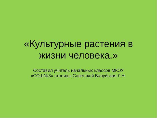 «Культурные растения в жизни человека.» Составил учитель начальных классов МК...