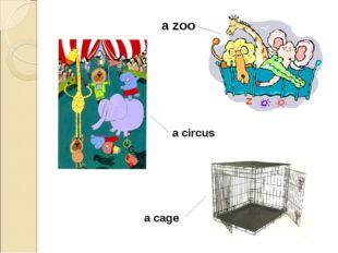 a zoo a circus a cage