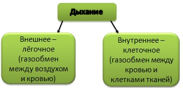 hello_html_m7361472.jpg