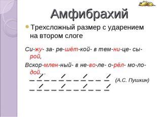 Амфибрахий Трехсложный размер с ударением на втором слоге Си-жу- за- ре-шёт-к