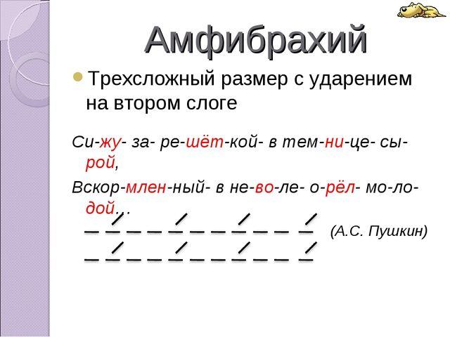 Амфибрахий Трехсложный размер с ударением на втором слоге Си-жу- за- ре-шёт-к...