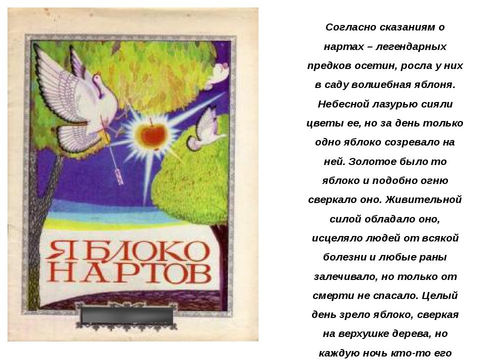 Согласно сказаниям о нартах – легендарных предков осетин, росла у них в саду...