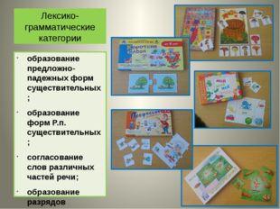 Лексико-грамматические категории образование предложно-падежных форм существи