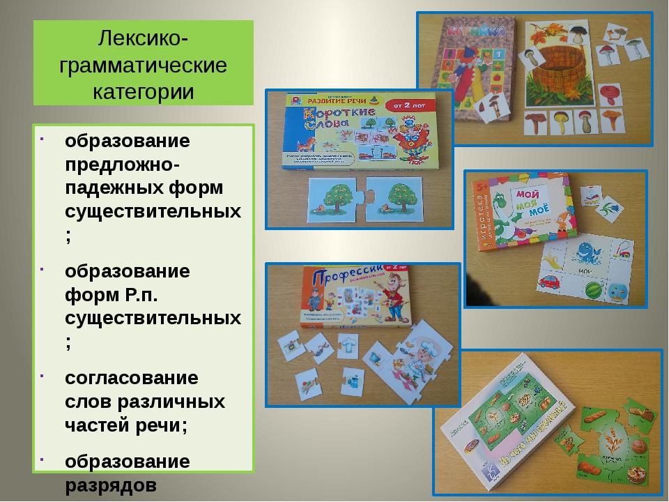 Лексико-грамматические категории образование предложно-падежных форм существи...