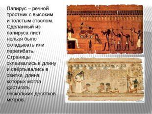 Папирус – речной тростник с высоким и толстым стволом. Сделанный из папируса
