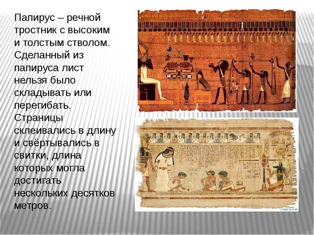 Папирус – речной тростник с высоким и толстым стволом. Сделанный из папируса...