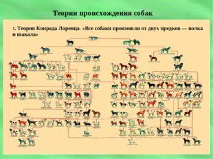 Теории происхождения собак 1. Теория Конрада Лоренца. «Все собаки произошли о