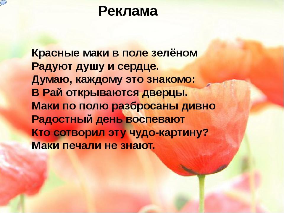 Реклама Красные маки в поле зелёном Радуют душу и сердце. Думаю, каждому это...